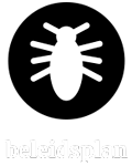 download beleidsplan